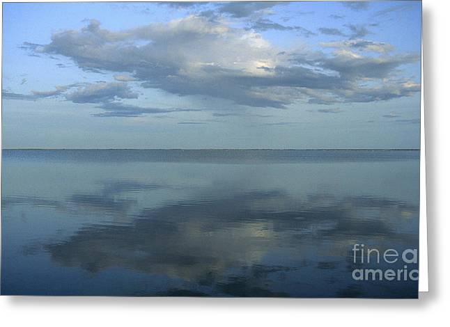 Southern France Greeting Cards - Etang de Vacaress. Camargue. Greeting Card by Bernard Jaubert