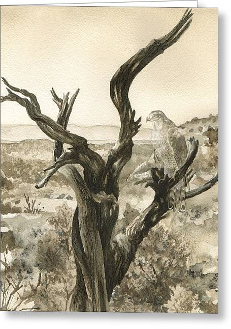 Bare Trees Greeting Cards - Eternal Vigil Greeting Card by Anne Gifford