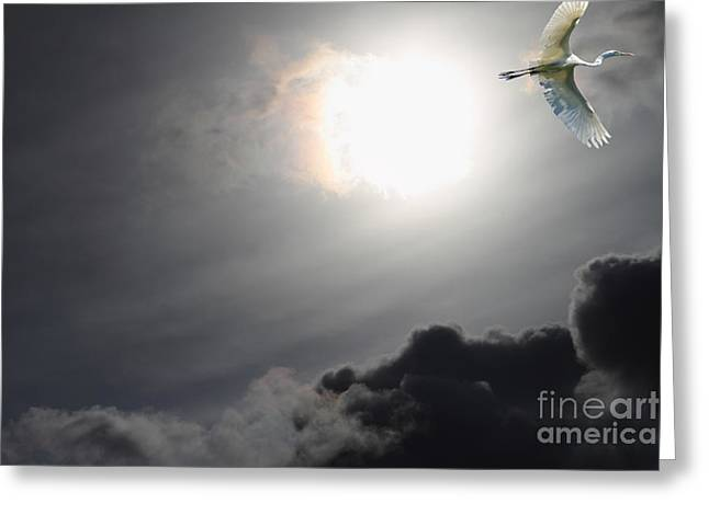 Eternity Greeting Card by Wingsdomain Art and Photography