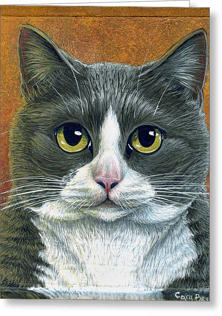 Tuxedo Greeting Cards - Etna Greeting Card by Cara Bevan
