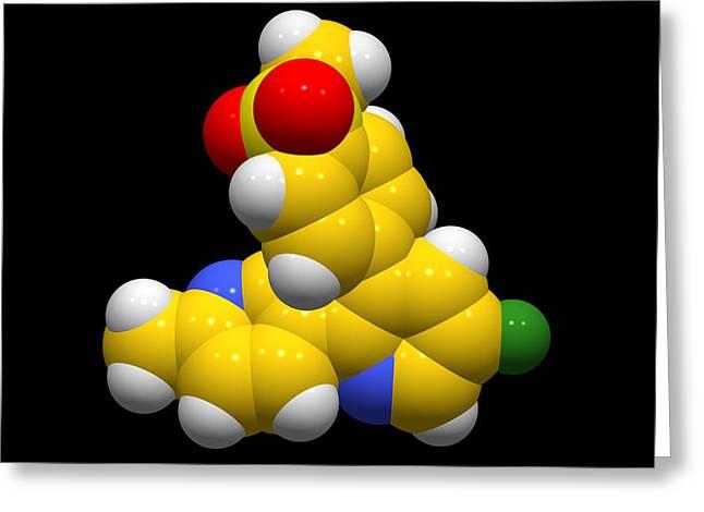 Biochemistry Biochemical Greeting Cards - Etoricoxib Anti-inflammatory Molecule Greeting Card by Dr Tim Evans