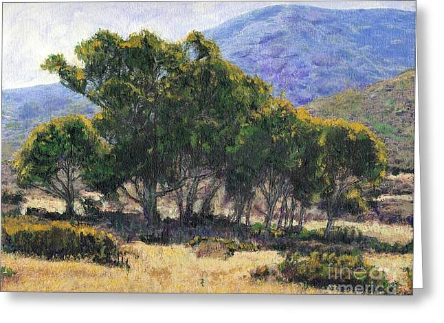 Eucalyptus Grove Catalina  Greeting Card by Randy Sprout