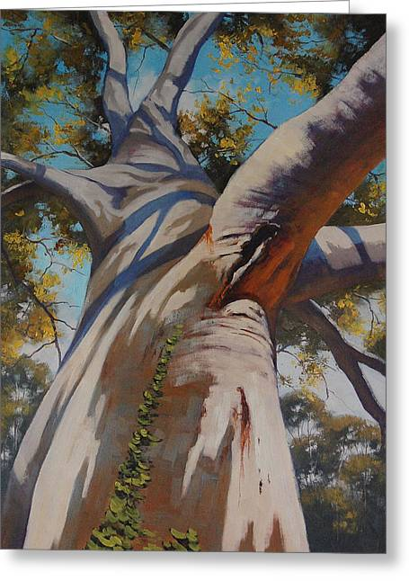 Gum-tree Greeting Cards - Eucalyptus Portrait Greeting Card by Graham Gercken