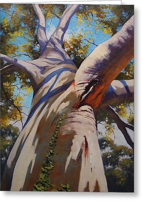 Australian Tree Greeting Cards - Eucalyptus Tree Portrait Greeting Card by Graham Gercken