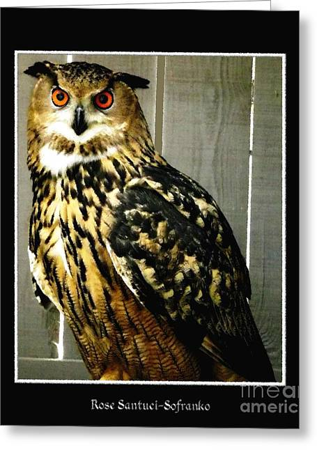 Hawk Creek Greeting Cards - Eurasian eagle-owl with Oil Painting Effect Greeting Card by Rose Santuci-Sofranko