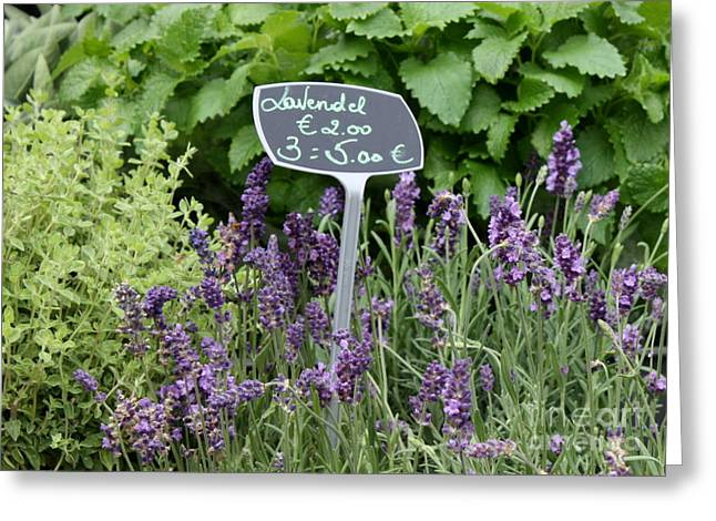 European Markets Greeting Cards - European Markets - Lavender Greeting Card by Carol Groenen