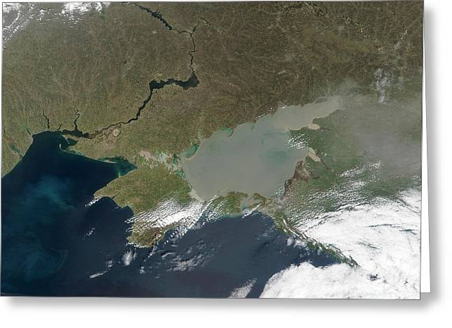 Algal Bloom Greeting Cards - Eutrophication In The Sea Of Azov Greeting Card by NASA / Science Source