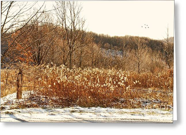 Snowy Field Greeting Cards - Even Now By The Gate Greeting Card by Lois Bryan
