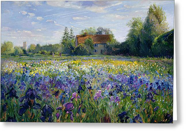 Farmhouse Greeting Cards - Evening at the Iris Field Greeting Card by Timothy Easton