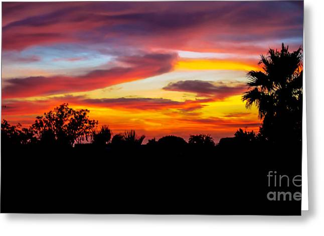 Haybale Greeting Cards - Evening Best Greeting Card by Robert Bales