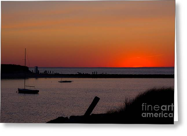 Evening Harbor Silhouette Greeting Card by Douglas Armstrong
