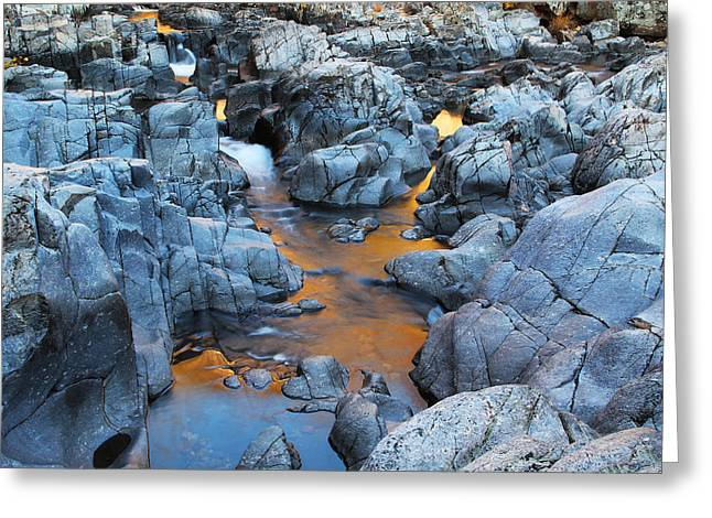 Evening Light On The Black River At Johnsons Shut Ins State Park IIi Greeting Card by Greg Matchick