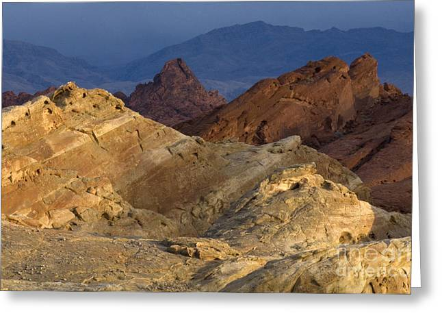Evening Lights Greeting Cards - Evening Light Valley Of Fire Greeting Card by Bob Christopher