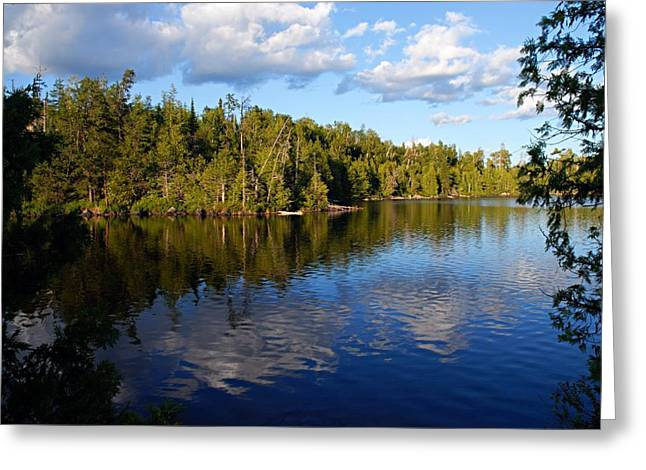 Evening On Jenny Lake Greeting Card by Larry Ricker