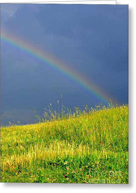 Summer Storm Photographs Greeting Cards - Evening Rainbow over Pasture Field Greeting Card by Thomas R Fletcher