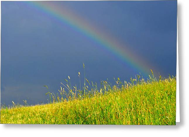 Evening Rainbow over Pasture Field Greeting Card by Thomas R Fletcher