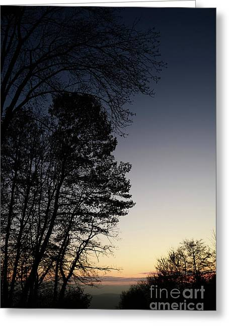Evening Silhouette At Sunset Greeting Card by Bruno Santoro
