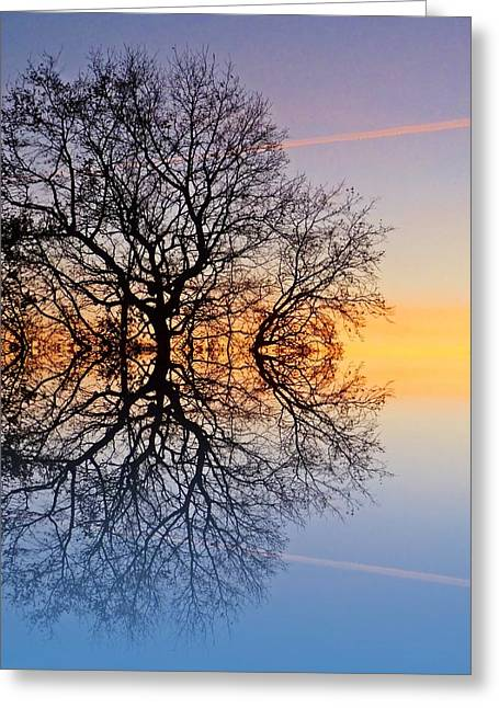 Reflecting Sunset Greeting Cards - Evening sky trails Greeting Card by Sharon Lisa Clarke