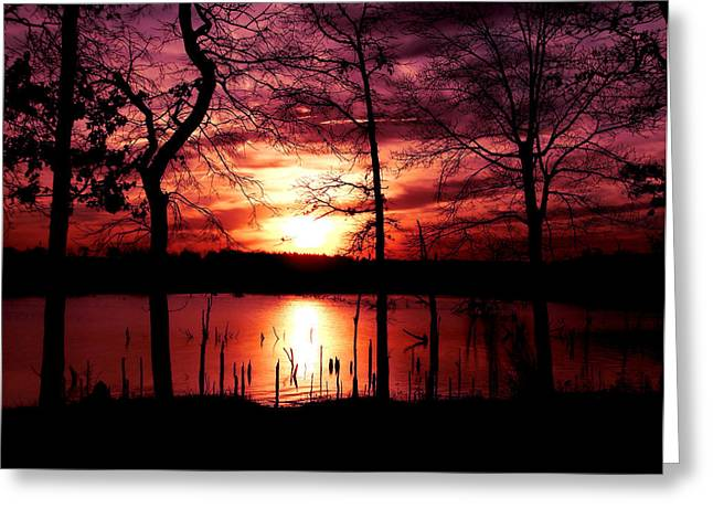 Colorful Photography Greeting Cards - Evening Wine Greeting Card by Karen M Scovill