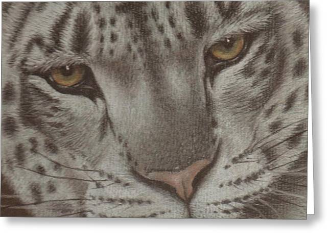 Watching Pastels Greeting Cards - Ever Watchful Greeting Card by Dawn Jones