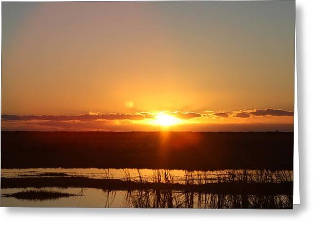 Bonnes Eyes Fine Art Photography Greeting Cards - Everglade Sunset Greeting Card by Bonnes Eyes Fine Art Photography