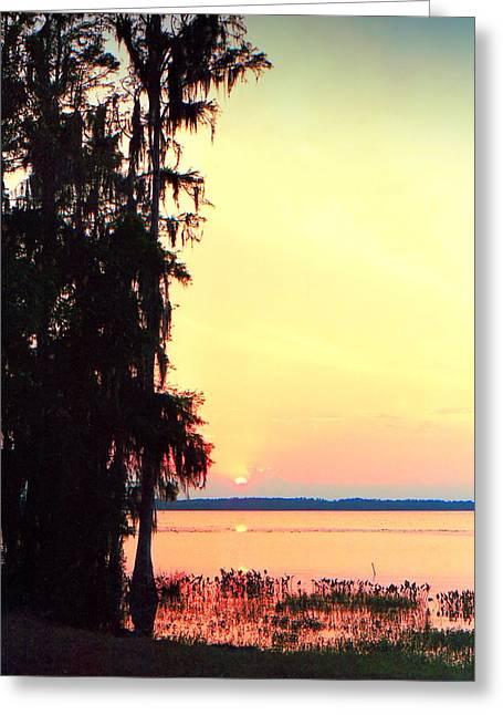 Lynnette Johns Greeting Cards - Everglades Sunset Greeting Card by Lynnette Johns