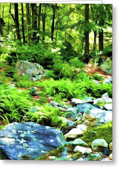 Photoshop Cs5 Greeting Cards - Evergreen Forest Greeting Card by Daphne Sampson