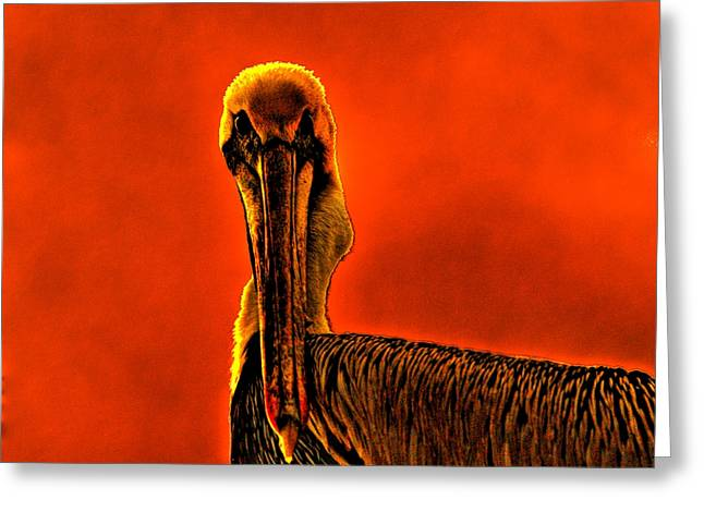 Jacksonville Greeting Cards - Evil Bird Greeting Card by William Jones