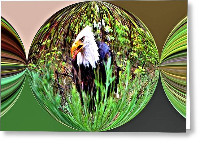 Evil Eagle Greeting Card by Don Mann