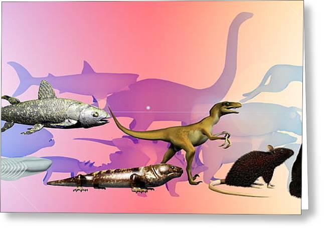 Biological Greeting Cards - Evolution Of Man Greeting Card by Christian Darkin
