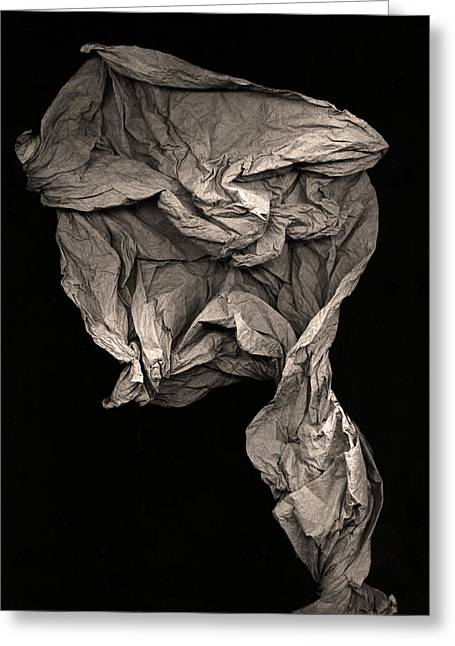 Sculpture Photographs Greeting Cards - Evolve Greeting Card by Peter Cutler