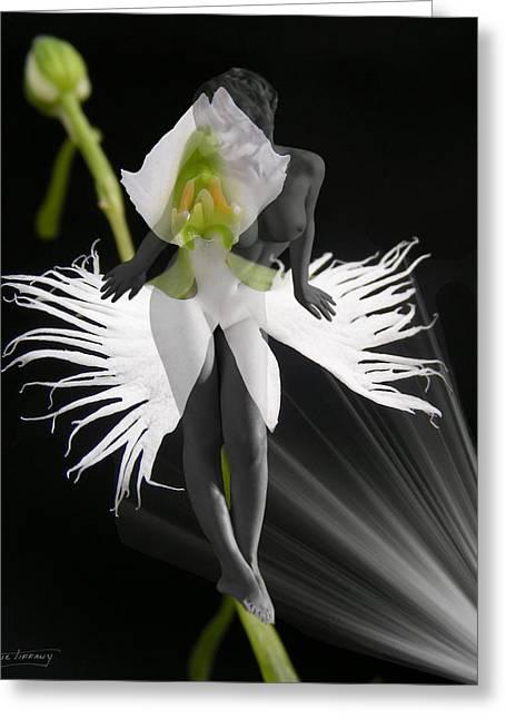 Floral Digital Art Digital Art Greeting Cards - Evy Greeting Card by Torie Tiffany