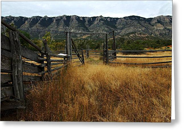 Ewing Greeting Cards - Ewing-Snell Ranch 1 Greeting Card by Larry Ricker
