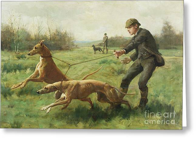 Greyhound Dog Greeting Cards - Exercising Greyhounds Greeting Card by George Goodwin Kilburne
