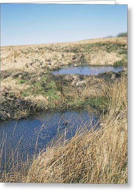 Carbon Dioxide Greeting Cards - Exmoor Blanket Bog Greeting Card by David Aubrey