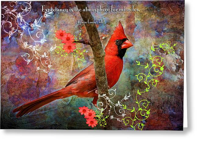 Songbird Prints Greeting Cards - Expectancy and Miracles Greeting Card by Bonnie Barry