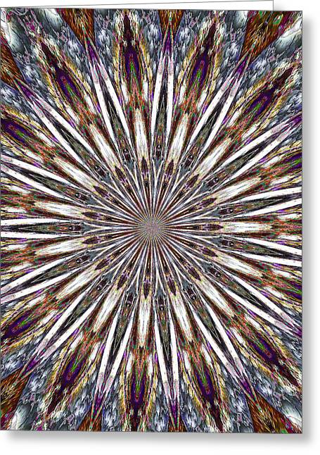 Abstract Sunburst Greeting Cards - Exploding Feathers Greeting Card by Carolyn Marshall