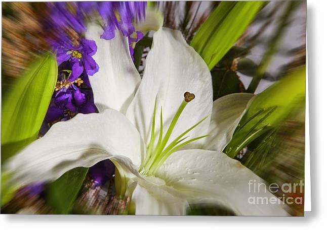 Flowers Stretched Prints Greeting Cards - Exploding Flowers Greeting Card by M K  Miller