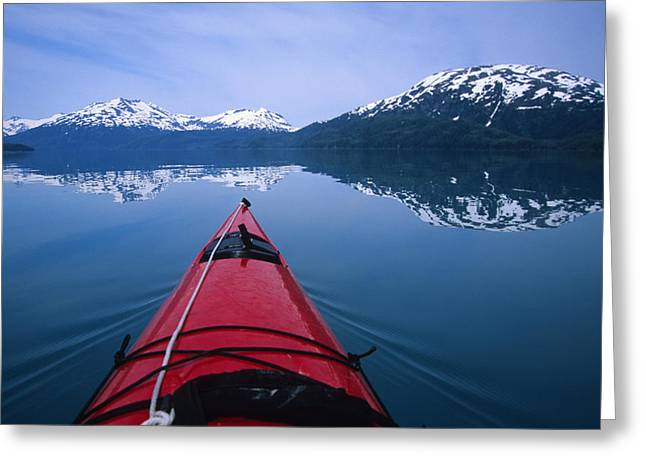 Prince William Greeting Cards - Exploring In A Sea Kayak A Calm Bay Greeting Card by Bill Hatcher