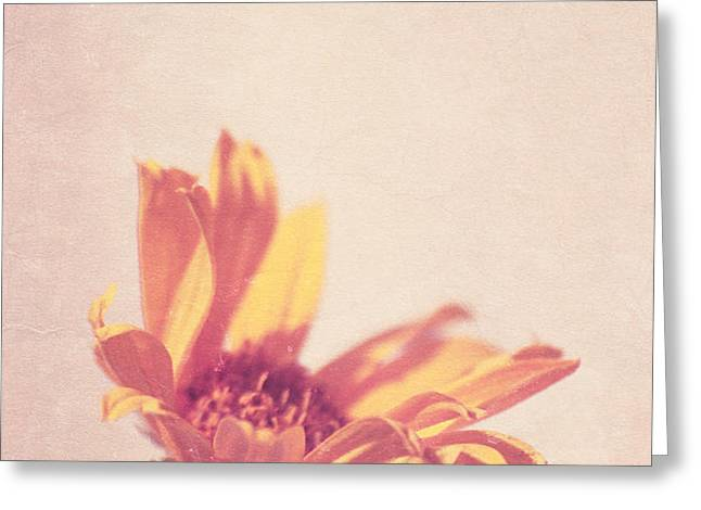 Expression - s07ct01 Greeting Card by Variance Collections