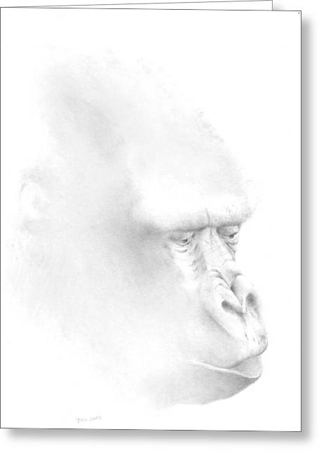 Gorilla Drawings Greeting Cards - Extinction Greeting Card by Ann Hamilton