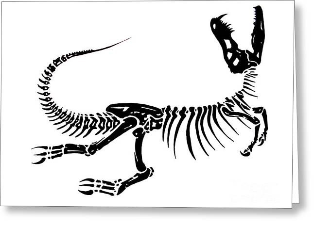 Smear Drawings Greeting Cards - Extinction Greeting Card by Jack Norton