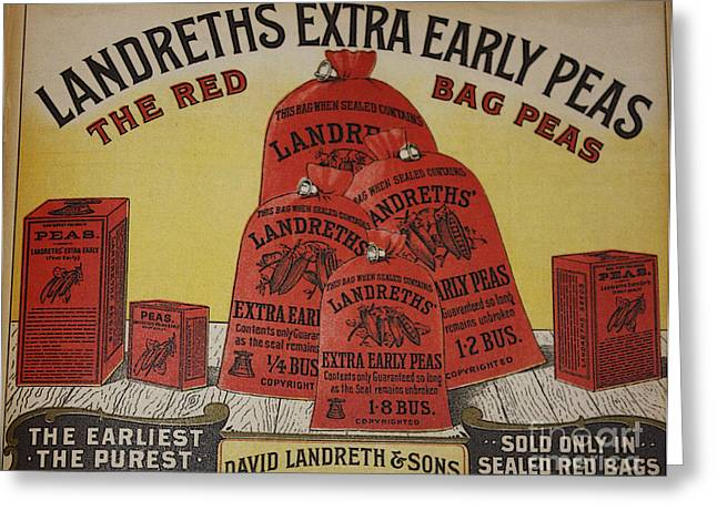 Red Bag Greeting Cards - Extra Early Peas Greeting Card by David Bearden