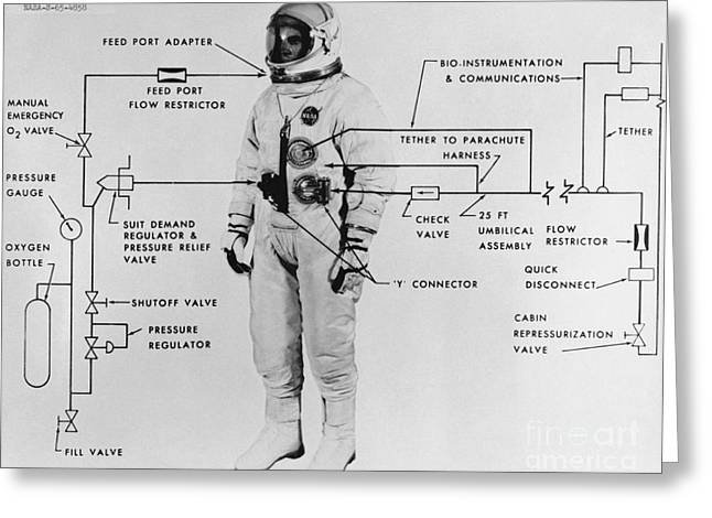White Suit Greeting Cards - Extravehicular Space Suit, 1965 Greeting Card by NASA/Science Source