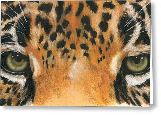 Wildcats Paintings Greeting Cards - Eye-Catching Jaguar Greeting Card by Barbara Keith