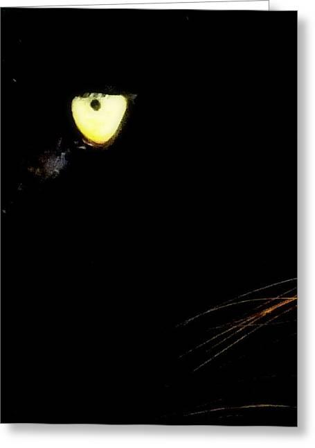 Glowing Eyes Greeting Cards - Eye of the Panther Greeting Card by Karen Wiles