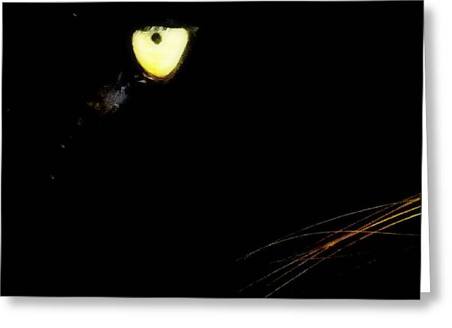 Eye of the Panther Greeting Card by KAREN WILES