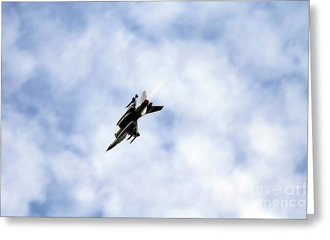 F-16 Of The Belgian Air Force Greeting Card by Luc De Jaeger