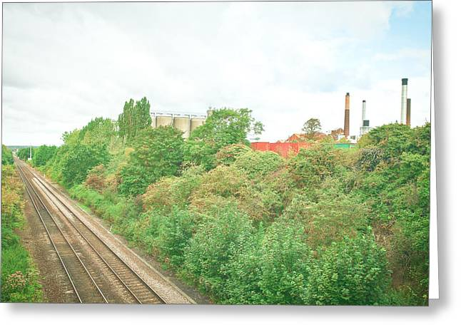 Woodland Scenes Greeting Cards - Factory and trainlines Greeting Card by Tom Gowanlock