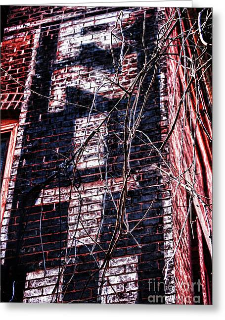 Northampton Greeting Cards - Faded Paint And Vines Greeting Card by HD Connelly